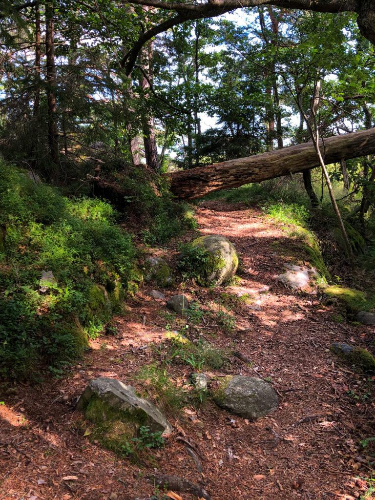 Hard trail