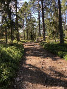 More difficult trail at björnö