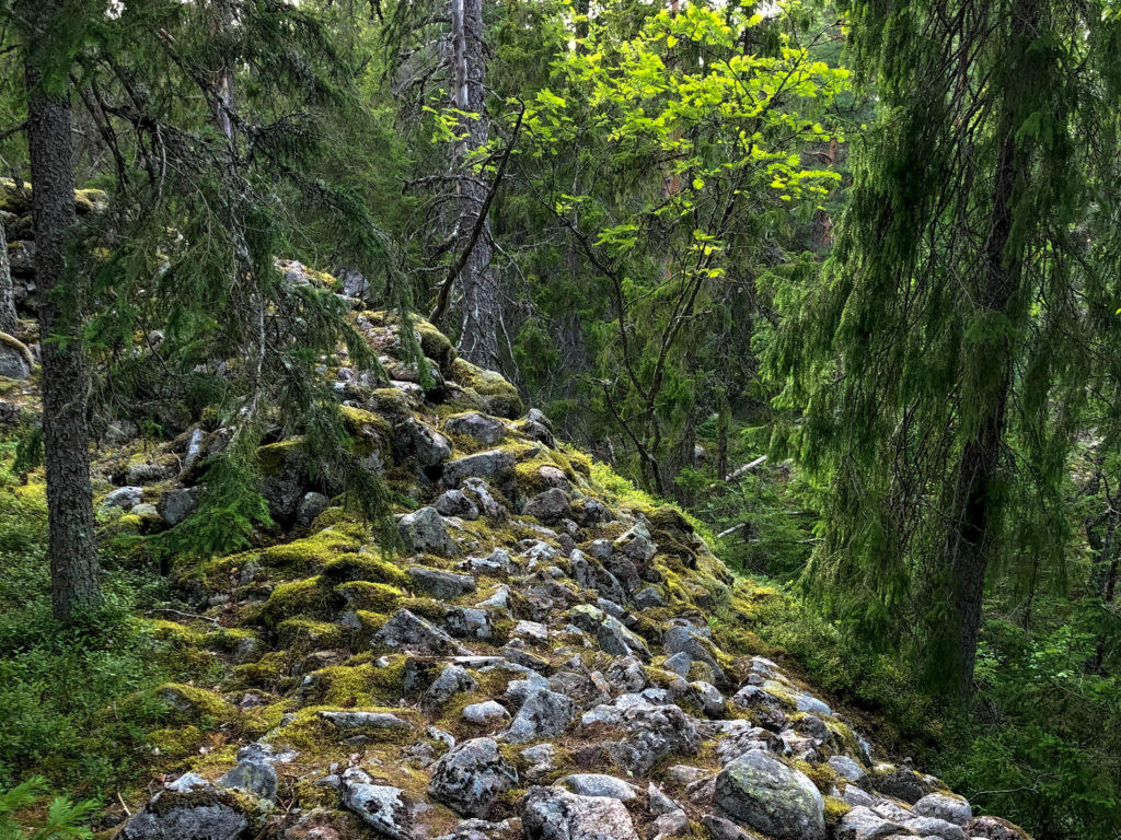 An Iron Age hill fort wall in Tyresta National Park